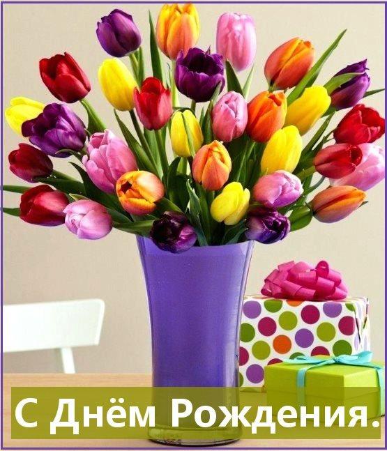 картинки поздравления с днем рождения тюльпаны картин